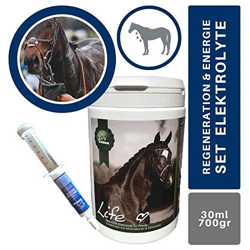 Emma Electrolyte Powder + Booster I Amino Acids Complex I Minerals Sodium Salts Potassium Magnesium I 100% Pure I Energy I Diarrhoea Sweating I Minerals Recovery Horse 700 g 30 ml