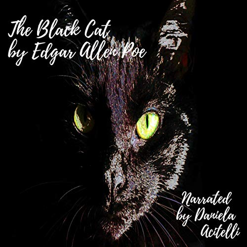 The Black Cat audiobook cover art