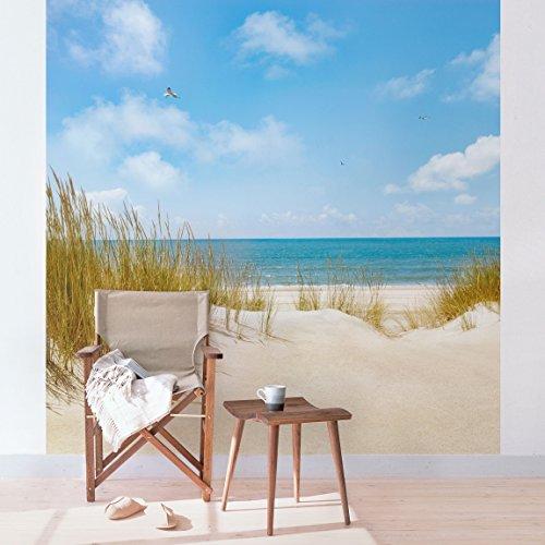 Apalis Fototapete Strand an der Nordsee Vliestapete Quadrat | Vlies Tapete Wandtapete Wandbild Foto 3D Fototapete für Schlafzimmer Wohnzimmer Küche | Größe: 240x240 cm, mehrfarbig, 108971
