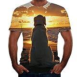 Correr Shirt Hombre Verano Cuello Redondo Moderno Hombre Casuales Camisa Moda Novedad 3D Impresión Manga Corta Deportiva Camisa Ajustado Tendencia Creativa Suelta Hombre T-Shirt T08 XL