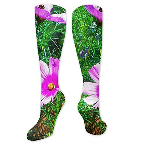 Nifdhkw Wild Canadian Cosmos Polyester Cotton Over Knee Leg High Socks Fashion Unisex Thigh Stockings Cosplay Boot Long Tube Socks for Sports Gym Yoga Hiking Cycling Running Soccer