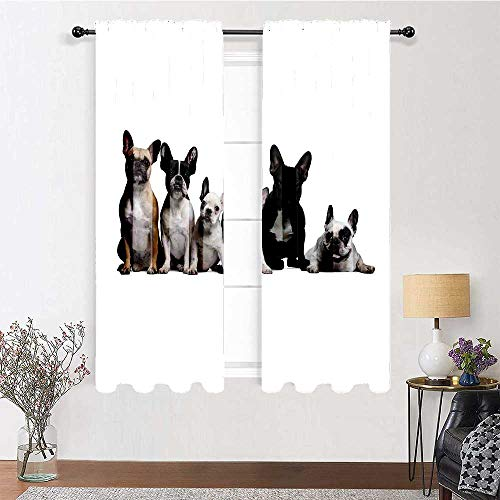 GugeABC Patio Curtains 63 inch Length, Bulldog Drapes for Bedroom 72' x 63' - Group of Young French Bulldogs with Adorable Expressions Animal Lover Photo, Black White Beige