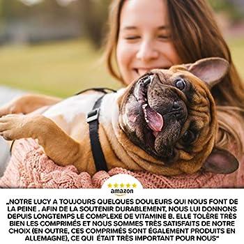 Complexe Vitamine B Chien - Précieuses B vitamines chien à partir de 2kg, 120 comprimés de vitamines, Avec K3, de l'acide folique, du calcium et de la biotine pour les chiens, Fabriqué en Allemagne