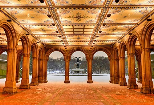 EdCott 5x3ftPolyester Winter Hintergrund für Fotografie Bethesda-Brunnen im Central Park New York nach Schneesturm Indoor Dekore Tapete Kinder Erwachsene Porträts Fotostudio