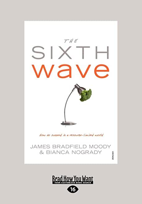 The Sixth Wave: How to succeed in a resource-limited world