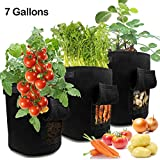 LEHOUR Grow Bags