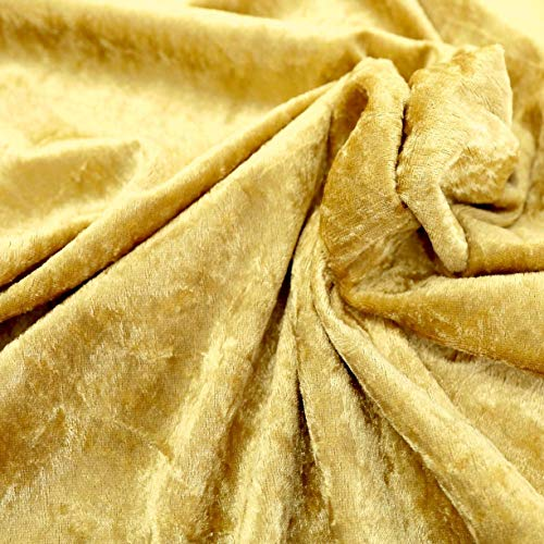 TOLKO 1m Pannesamt als Meterware Edel glänzender Stretch Samt-Stoff zum Nähen Dekorieren | 145cm breit Kleidungsstoff Dekostoff Modestoff Polyesterstoff für Vorhänge Gardinen Bühne (Gold-Beige)