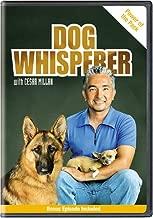 cesar millan dog training dvd