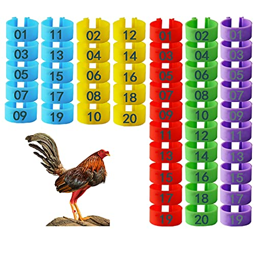 Hasoar 100 Pcs Chicken Leg Bands Rings, Multicolor Chicken Bracelets Tags Numbered Poultry Leg Bands for Chicken Pigeon Duck Turkey Bird