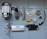 L-faster 48V 750W bürstenlosen Motor eléctrico de Triciclo Reich Shaw...
