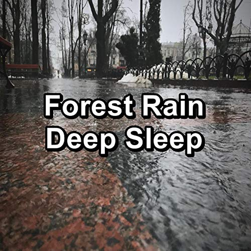Gutter Rain with Alpha Waves For Babies to Sleep