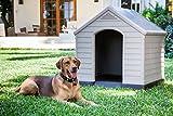Zoom IMG-2 curver caseta de perro para