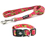 azuza Dog Collar and Leash Set, Pineapple Patterns on Nylon Collar and Matching Leash, Great Option for Small Dogs
