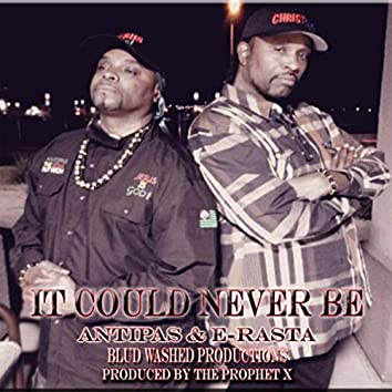 It Could Never Be (feat. E-Rasta)