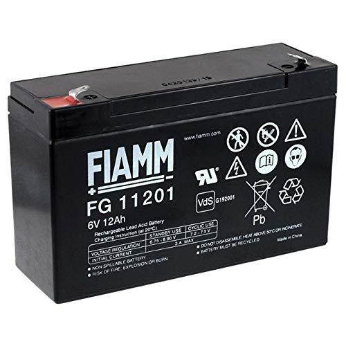 FIAMM Batería de Plomo-ácido FG11201 Vds 6V 12 Ah