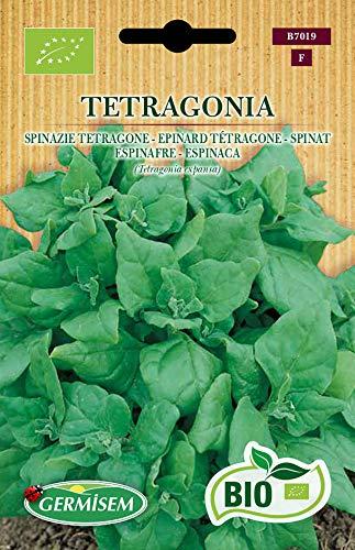 Germisem Orgánica Tetragone Semillas de Espinacas 1 g