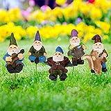 Achort 5 Stück Miniatur Gartenzwerg Figuren Zubehör für Outdoor-Deko Mini Gartenzwerg Figuren Verschiedene Miniatur Blumen Garten Blumentopf Puppenhaus Dekoration für DIY Blumentopf Pflanzen Statue
