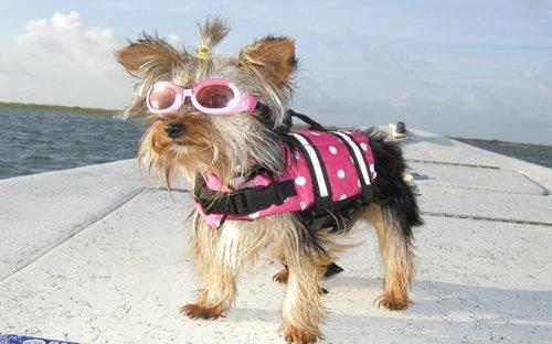 Yosoo Dog Life Jacket Pet Life Preserver with Reflective Stripes Vest Saver Coat Flotation Float Life Jacket Aid Buoyancy for Doggy (XXS, Rose) (XXS)