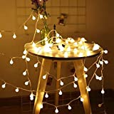 RaThun LED String Lights,Plug in String Lights,49ft 100 LED 8 Modes Waterproof Globe Lights,Perfect for Indoor and Outdoor Use with 30V Low Voltage Transformer,Extendable,UL588 Approved (Warm White)
