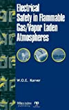 Electrical Safety in Flammable Gas/Vapor Laden Atmospheres (Safety, Health & Hygiene) (English Edition)