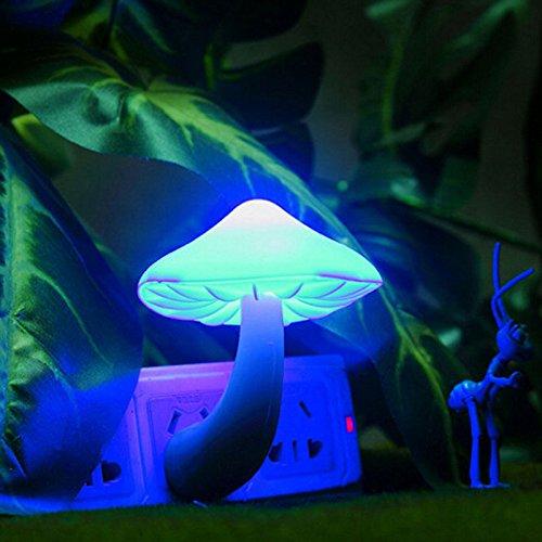 Belleza Luz de Noche de Lava Lámparas LED Pequeña Portátil de la Lámpara de la Lámpara de la Mesita de Noche Color de la Pared