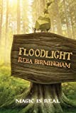Floodlight: Book One in the Hercynian Forest Series