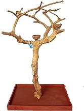 Best java tree bird stand Reviews
