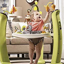 Evenflo ExerSaucer Jump and Learn Jumper- Best baby jumper
