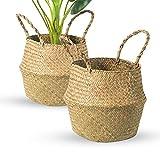 BrilliantJo 2er Set Seegras Körbe, faltbar geflochten Blumentopfhalter Wäschekorb Aufbewahrungskorb für Spielzeug Kleidung Pflanze (32 x 28 cm)