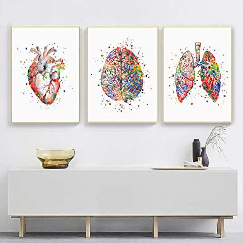 TWTQYC Watercolor Anatomy Art Clinic Decor Medical Art Anatomical Heart Brain Lungs Print Doctor Office Decoration Med Student Gift|30X50cmx3Pcs/No Frame