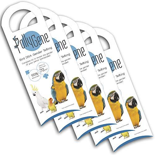 Pollygene 5 Kits de Sexage par ADN- perroquets, Lovebirds (inséparable), cacatoès. Plus de 300 psittacidés [Spécial pour éleveurs]