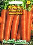 Möhre Nantaise 2 (porzione)