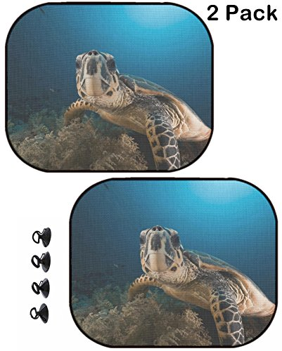 MSD Car Sun Shade Protector Side Window Block Damaging UV Rays Sunlight Heat for All Vehicles, 2 Pack Image ID: 8831570 Hawksbill Turtle in The Red Sea