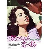 禁じられた恋の島(スペシャル・プライス) [DVD]
