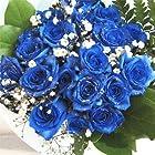 青いバラの花束 神秘的なブルーローズ プラチナの輝き バラ10本・カスミ草・グリーン付き バラの花束 生花