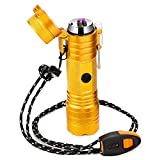 Arc Lighter Rechargeable USB Lighter Waterproof Windproof Plasma Lighter for Survival Tactical, Camping (Gold)