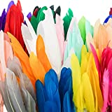 TOAOB 250pcs Natural Goose Feathers 4 to 6 Inch Craft Feathers Assorted Colors for DIY Crafts Wedding Home Party Decorations and Jewelry Making