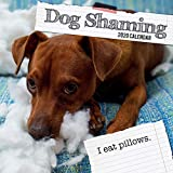 The Gifted Stationery 2020 Square Wall Calendar - Dog Shaming 2020 Humorous and Funny Calendar