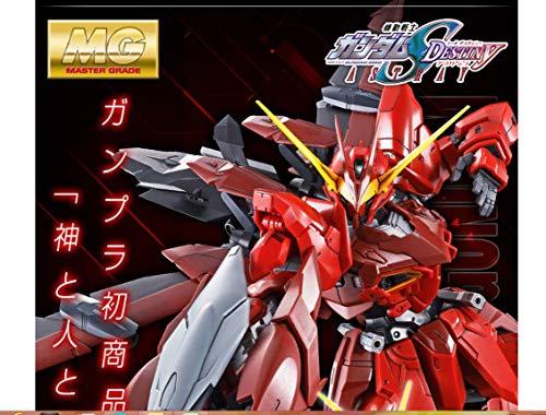1/100 MG ZGMF-X12A / RGX-00 Testament Gundam