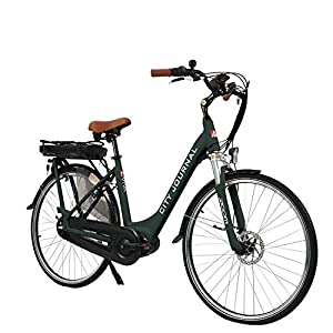 AsVIVA E-Bike Damen Hollandrad 28