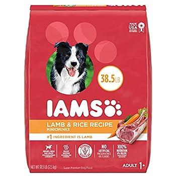 IAMS Minichunks Adult Dry Dog Food Lamb & Rice Recipe Dog Kibble 38.5 lb Bag