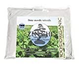 ZEN CHI Buckwheat Pillow- Organic Twin Size (20'X26') w Natural...