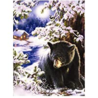 DIYペイント 数字 キャンバス油絵 黒熊動物 キット 子供&大人用 幅12インチ x 長さ16インチ