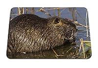 22cmx18cm マウスパッド (ヌートリアげっ歯類水) パターンカスタムの マウスパッド