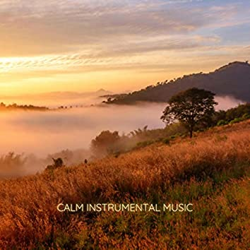 Calm Instrumental Music