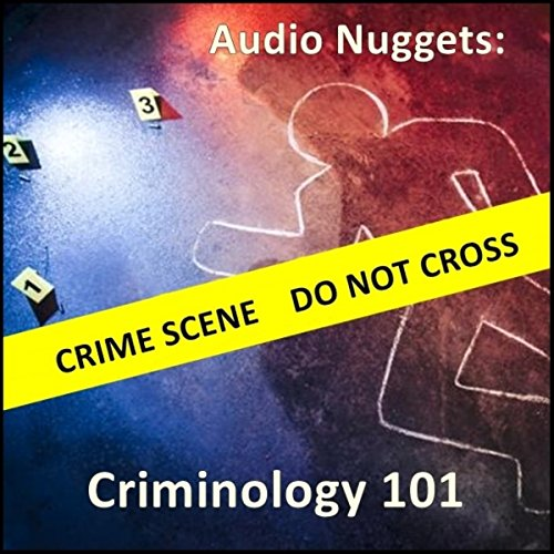 Audio Nuggets: Criminology 101 audiobook cover art