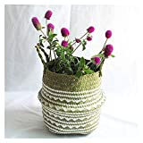 Cesti portaoggetti Cestino di stoccaggio di vimini, seagrass cestino cestino flower pot naturale rattan cestino pianta vaso giocattoli titolare lavanderia per cucina, soggiorno, bagno, camera da letto