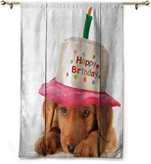 Andrea Sam Rod Pocket Blackout Curtains Kids Birthday,Cute Puppy Wearing a Party Cone Shaped Hat with Candlestick Party Greetings,Multicolor,35