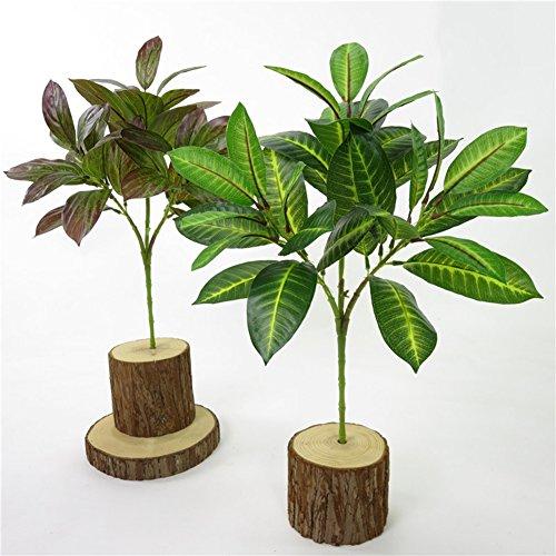 XdiseD9Xsmao 1 stuk 3 takken Fast Natuurlijke Magnolia-bladeren planten Hotel Home Bruiloftsdecoratie voeg sfeer toe aan Kerstmis lila