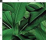 Insel, Dschungel, Botanisch, Blätter, Grün, Tropisch,
